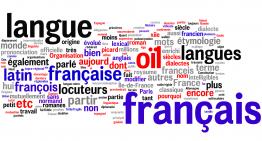 Risultati test CLIL francese