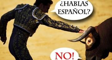 Corso di spagnolo per docenti