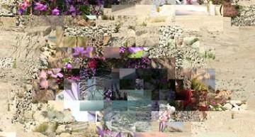 Festival di arte digitale